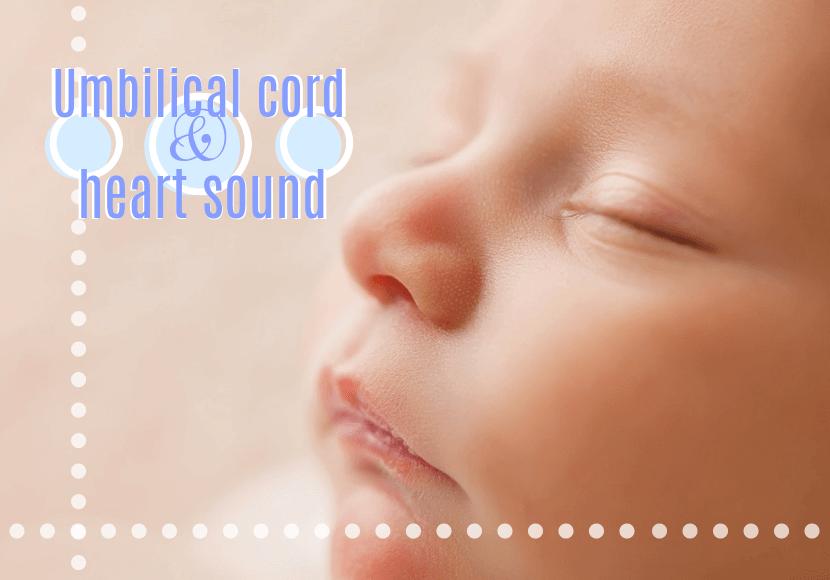 病院で臍帯音について聞いてみた!胎児の心音確認はいつから聴診器でやるの?