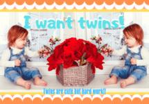 遺伝なしで双子は産める?双子が産まれる確率と双子を妊娠する方法