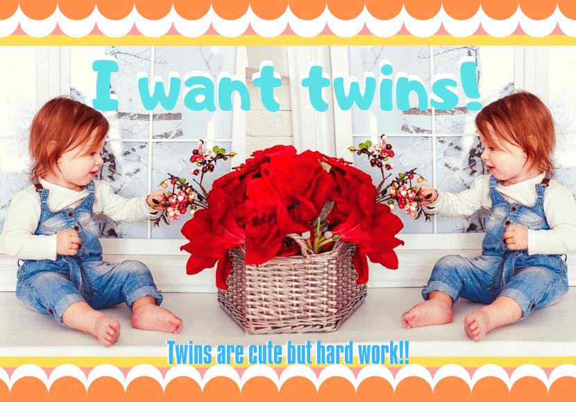 向かい合っている双子の写真です。